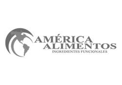 america-alimentos-sa-de-cv-logo